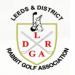 YRGA-Logos_0005_LDRGA